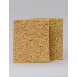 Textured Sponge