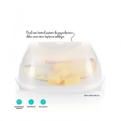 Tupperware Middle Cheese World