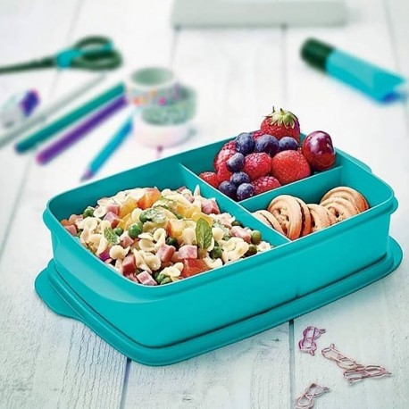 Tupperware Compartment Blue Color Nutrition Box 1Lt