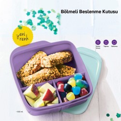 Lilac Two-Color Lunch Box with Tupperware Compartment