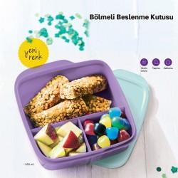 Tupperware Bölmeli Lila İki Renkli Beslenme Kutusu